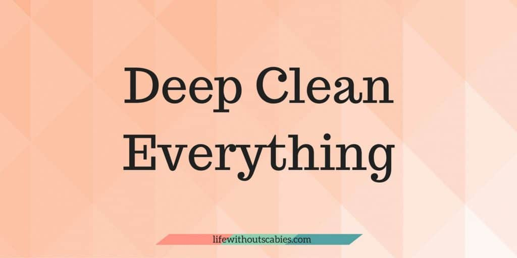 deep clean everything
