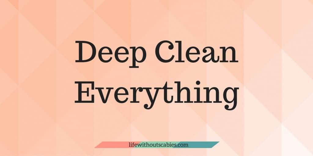 deep clean everything